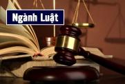 Tìm hiểu ngành Luật là gì? học gì? ra trường làm gì?